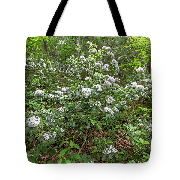 Tote Bag featuring the photograph Dreaming The World by Chris Scroggins
