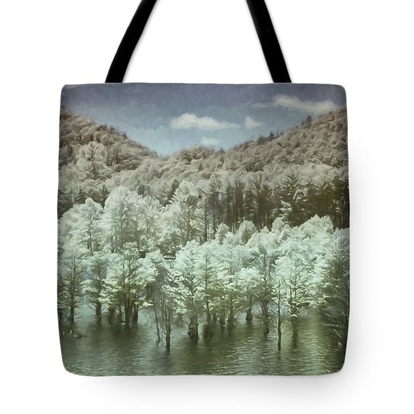 Dreaming Without Words Tote Bag