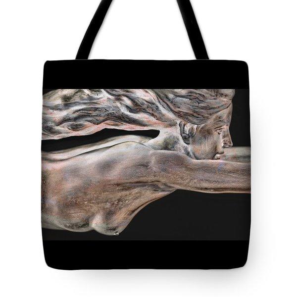 Dreams Of Flight Tote Bag
