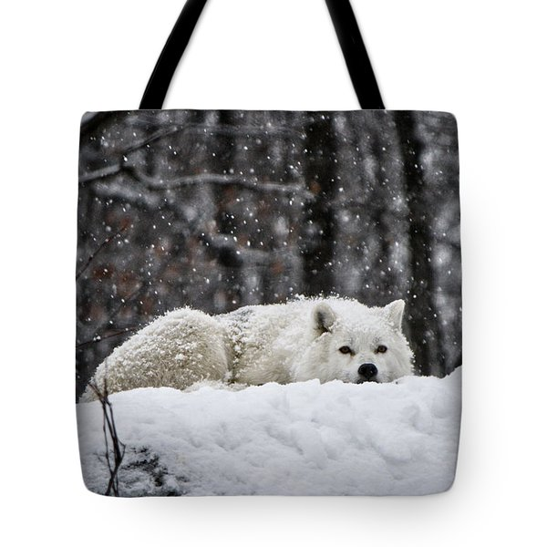 Dreams Of Warmer Weather Tote Bag