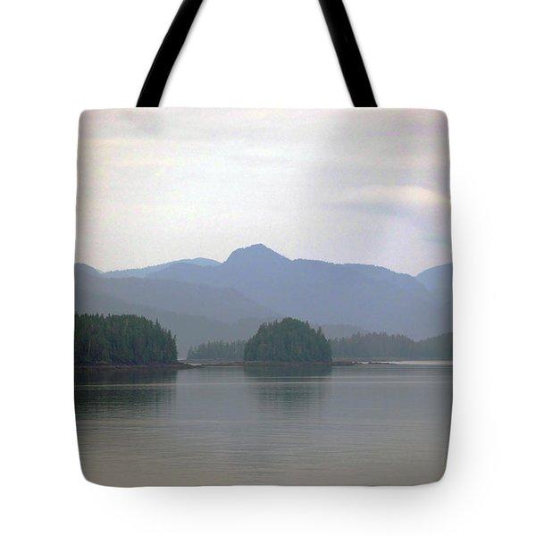 Dreamsacpe Tote Bag