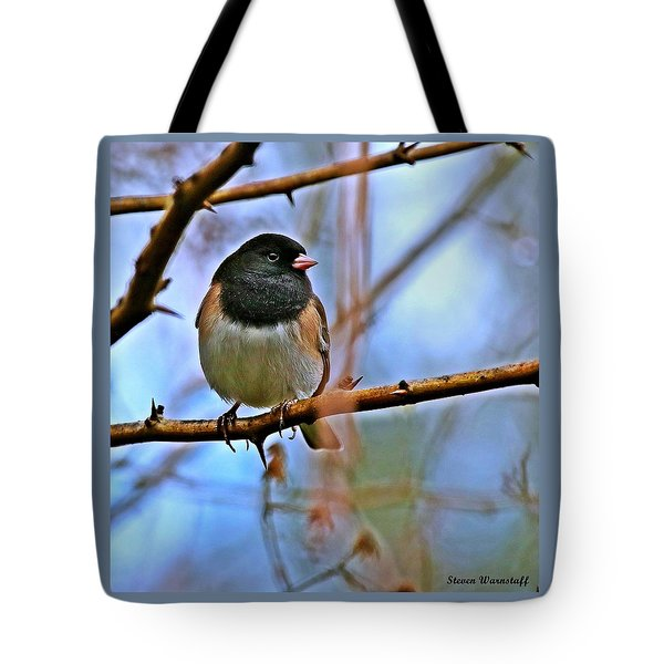 Dreamworld Tote Bag by Steve Warnstaff