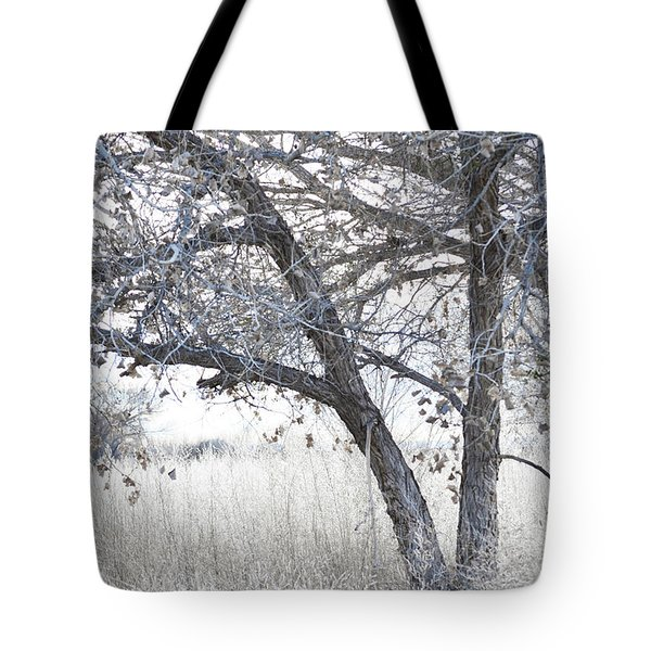 Tote Bag featuring the photograph Dreamy Bosque Tree by Andrea Hazel Ihlefeld