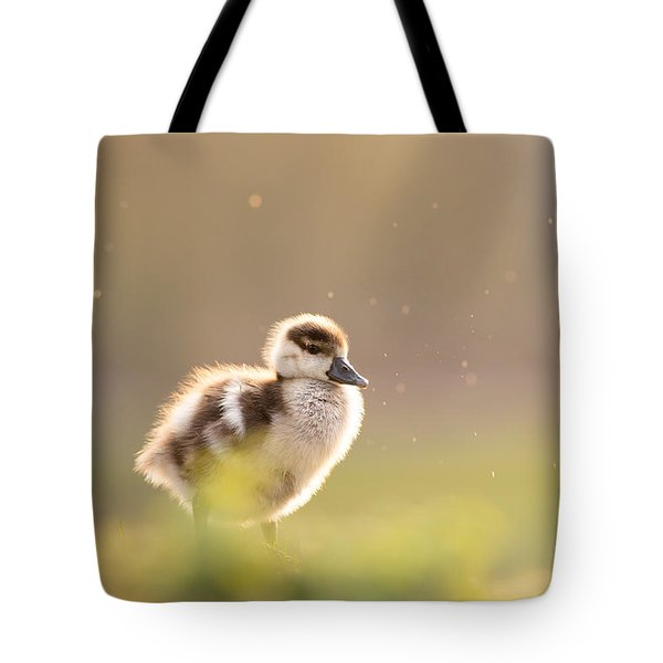 Dreamy Duckling Tote Bag