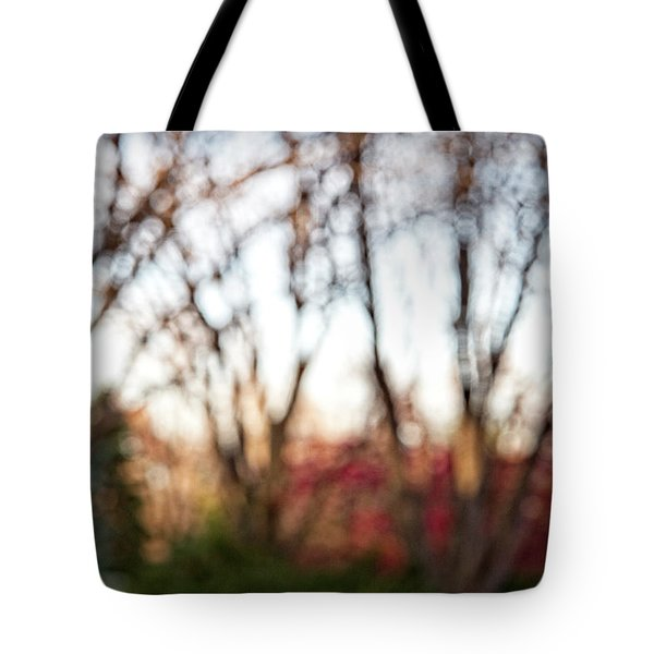 Tote Bag featuring the photograph Dreamy Fall Colors by Susan Stone