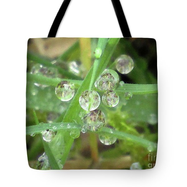 Dreamy Morning 5 Tote Bag