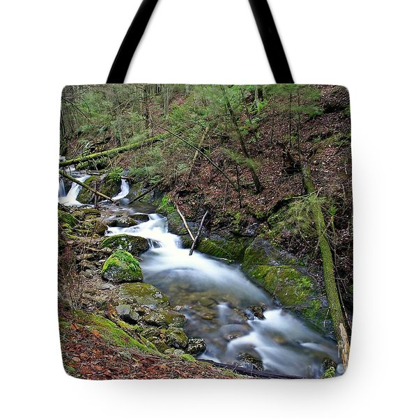 Dreamy Passage Tote Bag