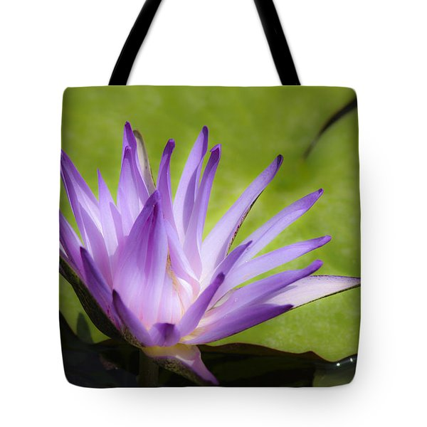 Dreamy Purple Water Lilly Tote Bag