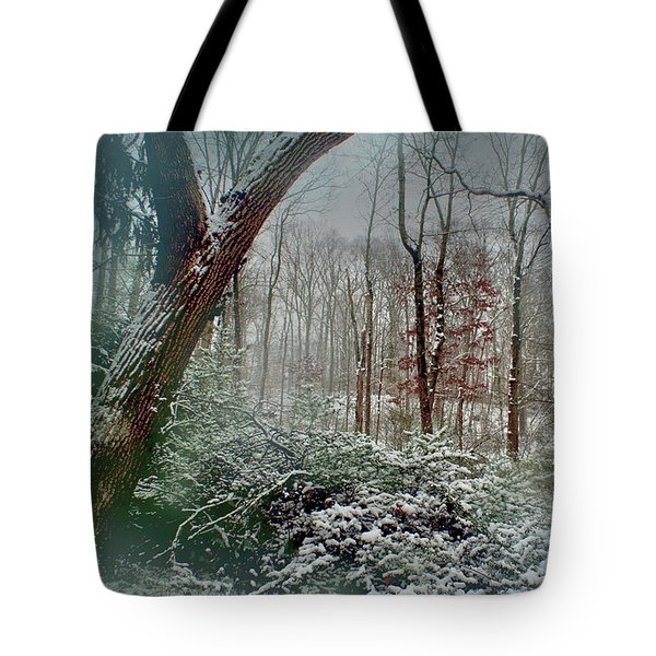 Dreamy Snow Tote Bag by Sandy Moulder