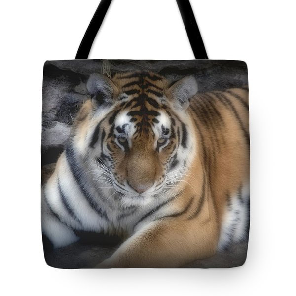 Dreamy Tiger Tote Bag by Sandy Keeton
