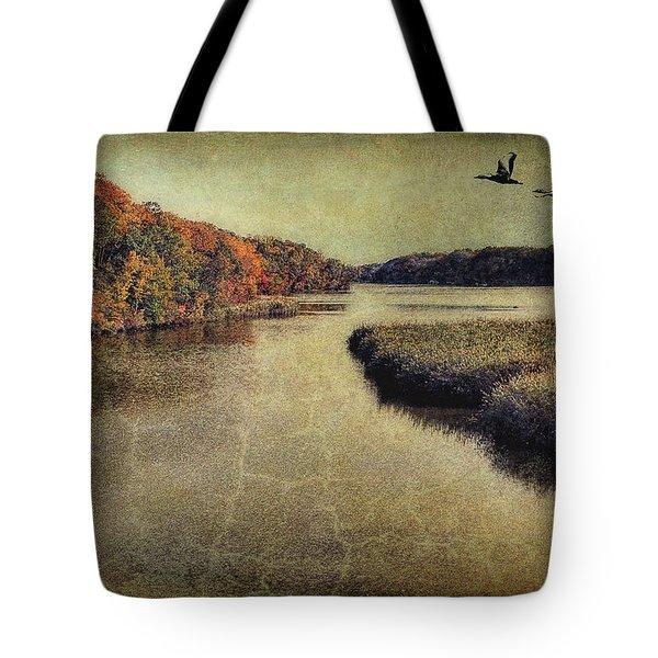 Dreary Autumn Tote Bag