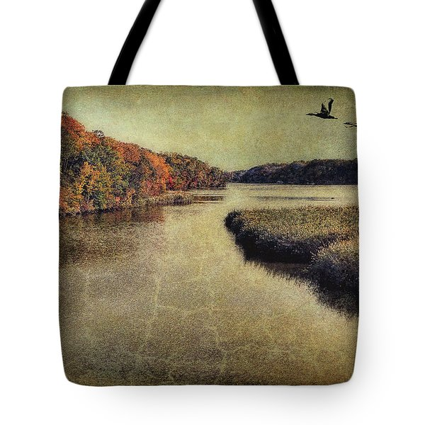 Dreary Autumn Tote Bag