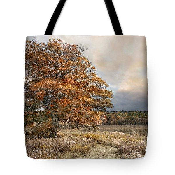 Dressed In Autumn Tote Bag