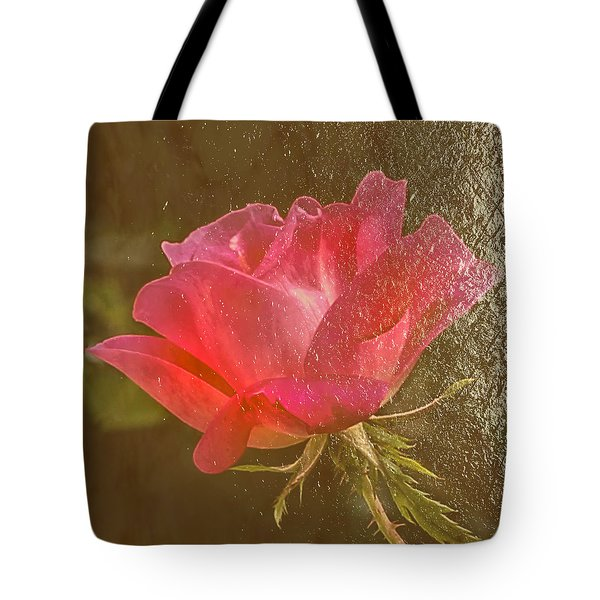 Dressed In Gold Tote Bag by Susi Stroud