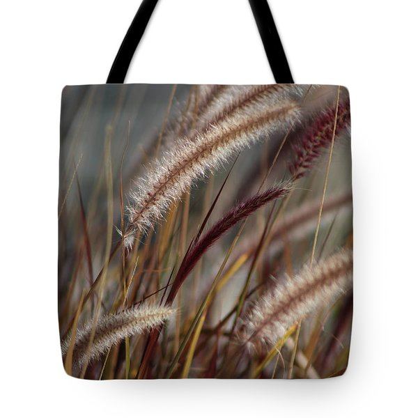 Dried Desert Grass Plumes In Honey Brown Tote Bag