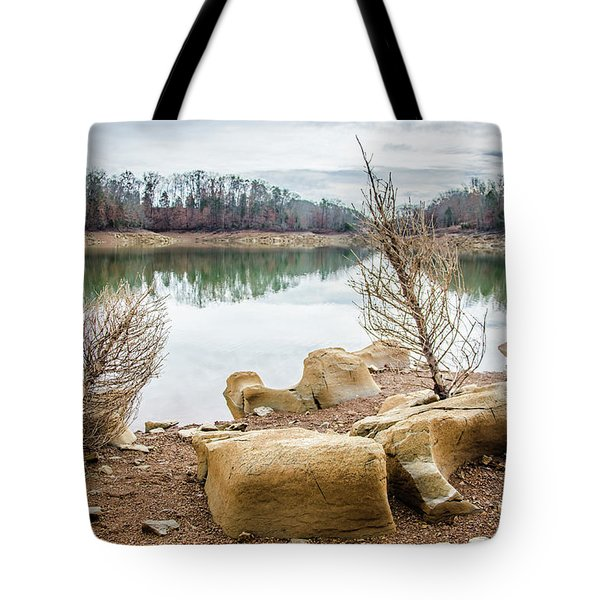 Dried Shrubs At Cherokee Reservoir Tote Bag