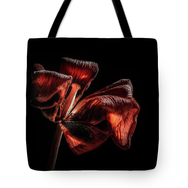 Dried Tulip Blossom Tote Bag