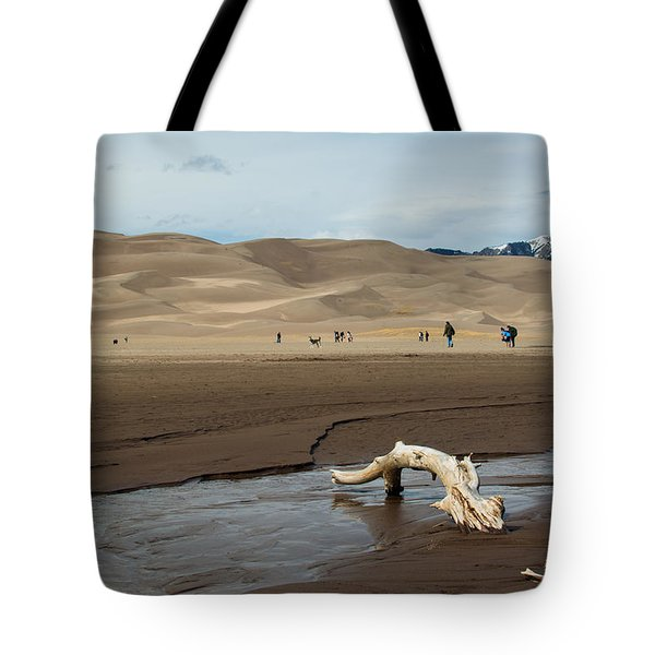 Drift Wood And Dunes Tote Bag
