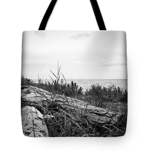 Tote Bag featuring the photograph Drift Wood by Karen Stahlros