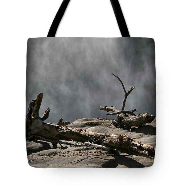 Driftwood Tote Bag by Andrei Shliakhau