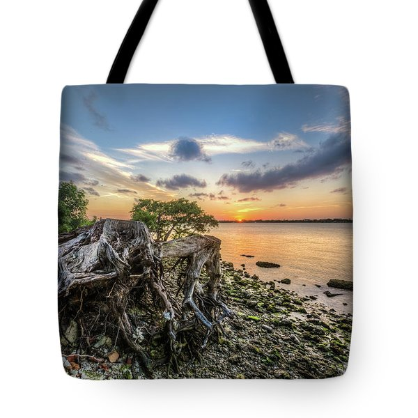 Tote Bag featuring the photograph Driftwood At The Edge by Debra and Dave Vanderlaan