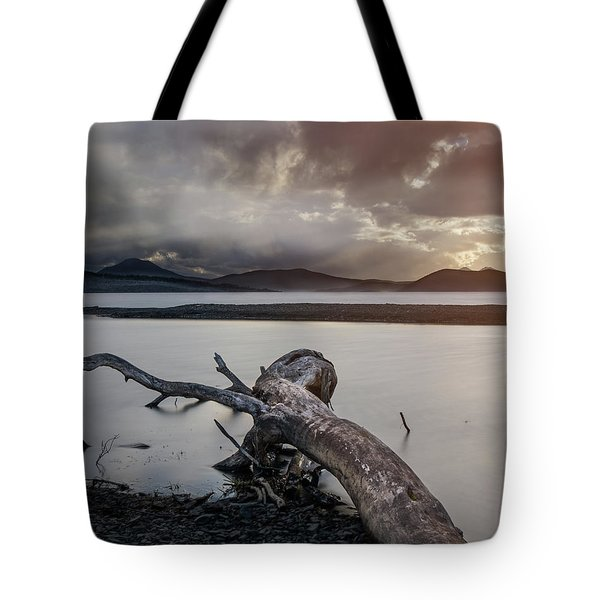 Driftwood At The End Of The World Tote Bag