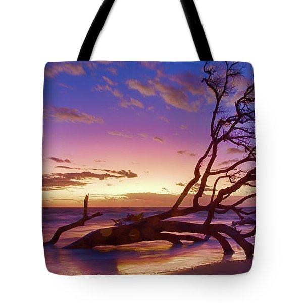Driftwood Beach 1 Tote Bag