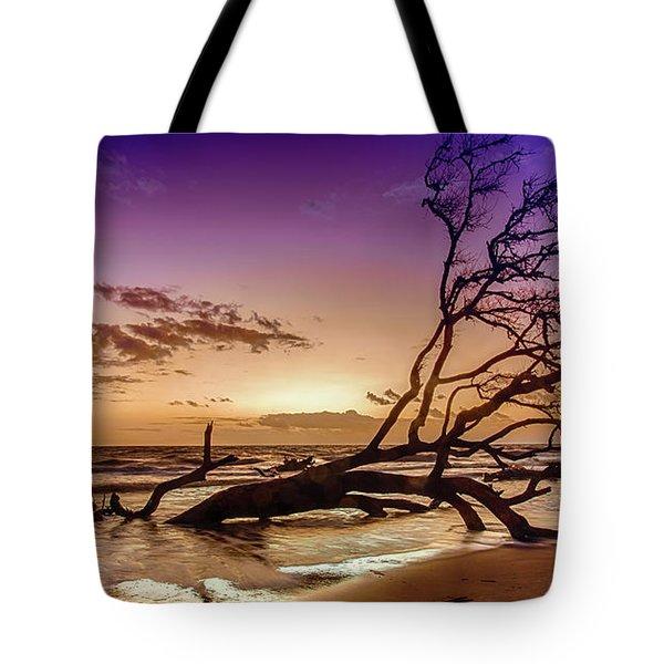 Driftwood Beach 2 Tote Bag