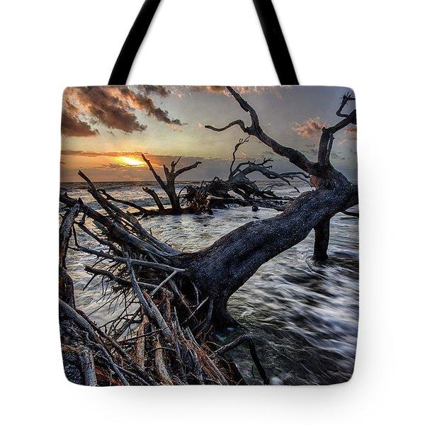 Driftwood Beach 5 Tote Bag