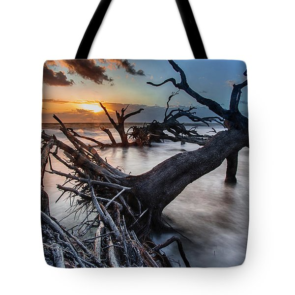 Driftwood Beach 6 Tote Bag