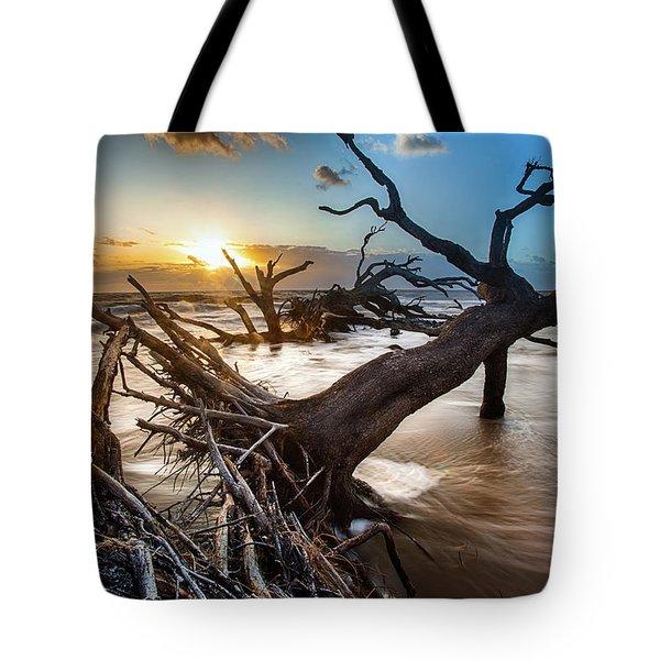 Driftwood Beach 7 Tote Bag