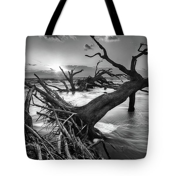 Driftwood Beach 8 Tote Bag