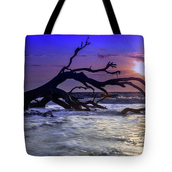 Driftwood Beach 9 Tote Bag