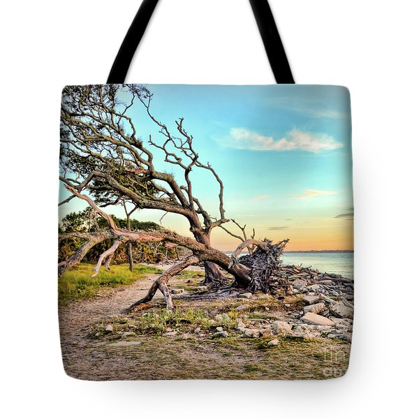 Driftwood Beach Morning 2 Tote Bag