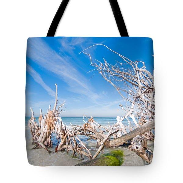 Driftwood C141348 Tote Bag