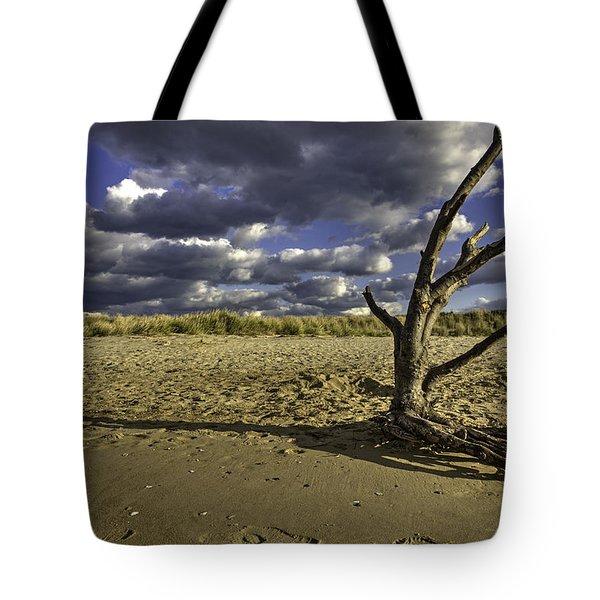 Driftwood II Tote Bag