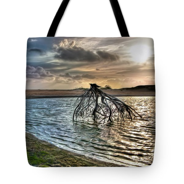 Driftwood In A Tide Pool Outer Banks Ap Tote Bag