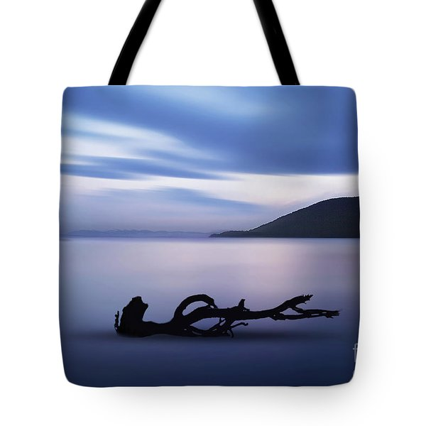 Driftwood Tote Bag by Jim  Hatch