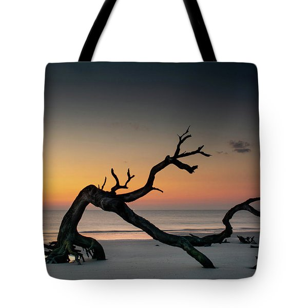 Driftwood Morning Tote Bag