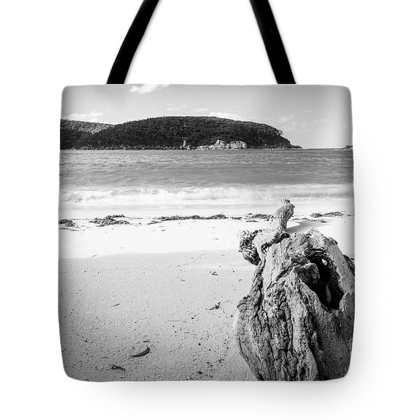 Tote Bag featuring the photograph Driftwood On Beach Black And White by Tim Hester