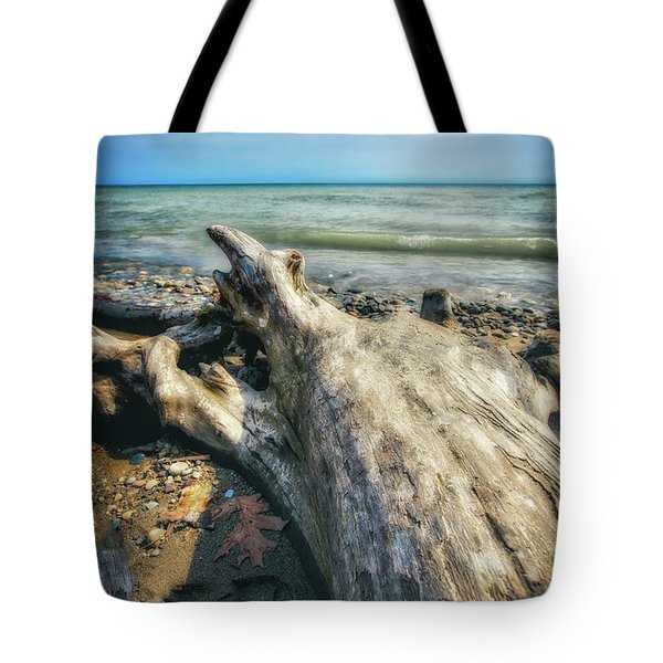 Tote Bag featuring the photograph Driftwood On Beach - Grant Park - Lake Michigan Shoreline by Jennifer Rondinelli Reilly - Fine Art Photography