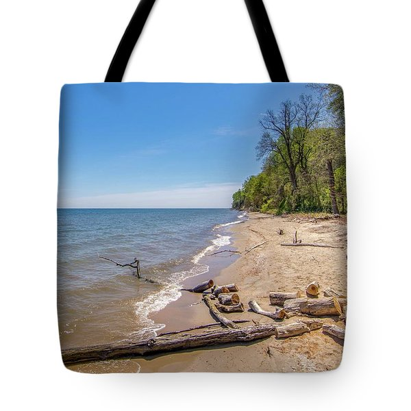Tote Bag featuring the photograph Driftwood On The Beach by Charles Kraus
