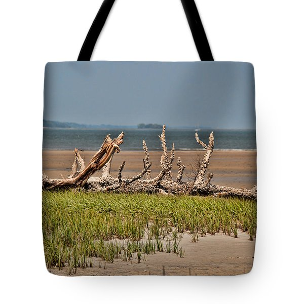 Driftwood With Baracles Tote Bag