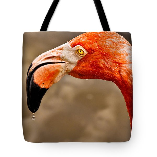 Dripping Flamingo Tote Bag by Christopher Holmes