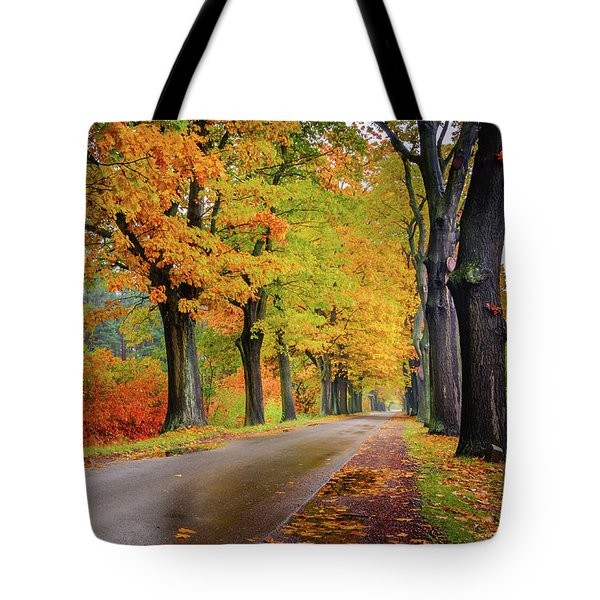 Tote Bag featuring the photograph Driving On The Autumn Roads by Dmytro Korol