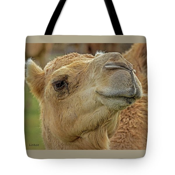 Dromedary Or Arabian Camel Tote Bag