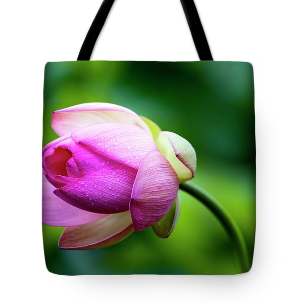 Tote Bag featuring the photograph Droplets On Lotus by Edward Kreis