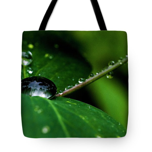 Tote Bag featuring the photograph Droplets On Stem And Leaves by Darcy Michaelchuk