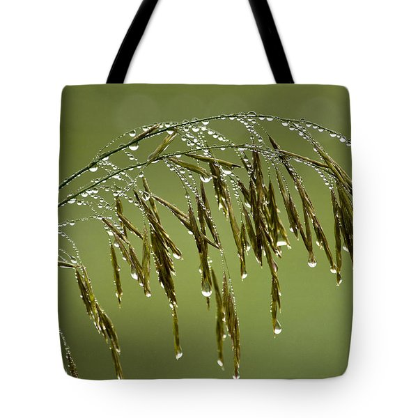 Drops Of Water On Grass Tote Bag by Christina Rollo