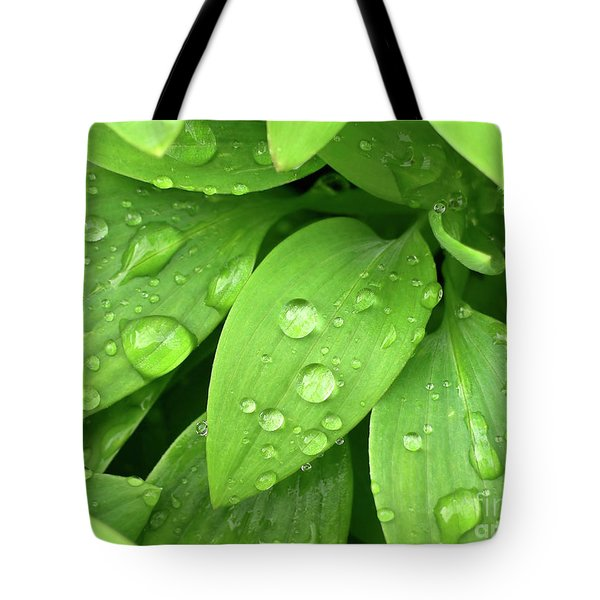 Drops On Leaves Tote Bag by Carlos Caetano